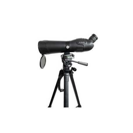 Zilveroxide Batterij SR66 1.55 V 27 mAh 1-Pack